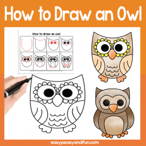 Guided Drawing Lesson Owl