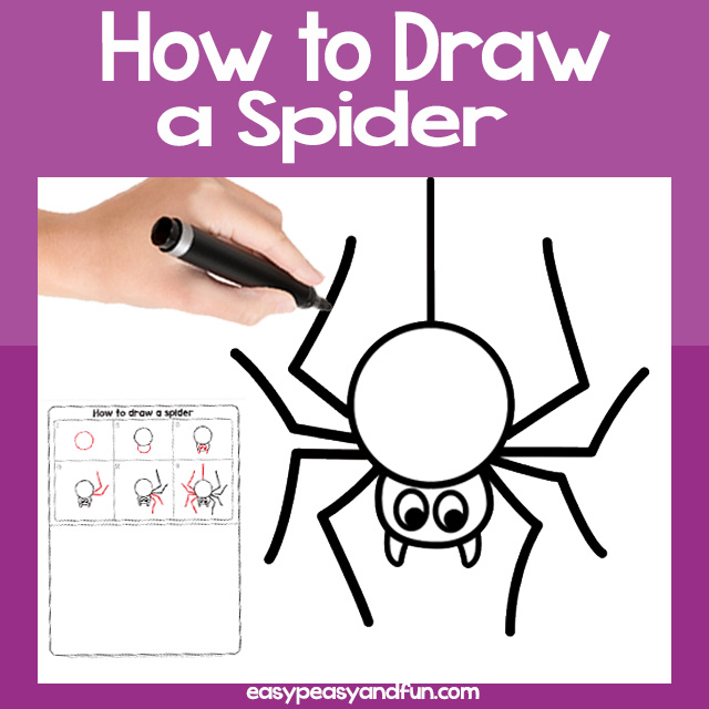 Spider Drawing Guide
