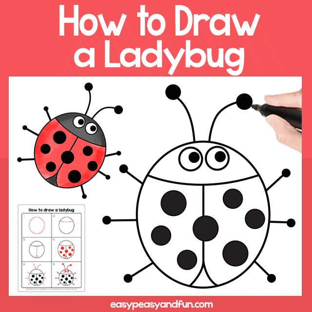 image about Printable Ladybug known as Ladybug Guided Drawing Printable Very simple Peasy and Pleasurable Subscription