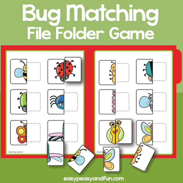 Bug Matching File Folder Game