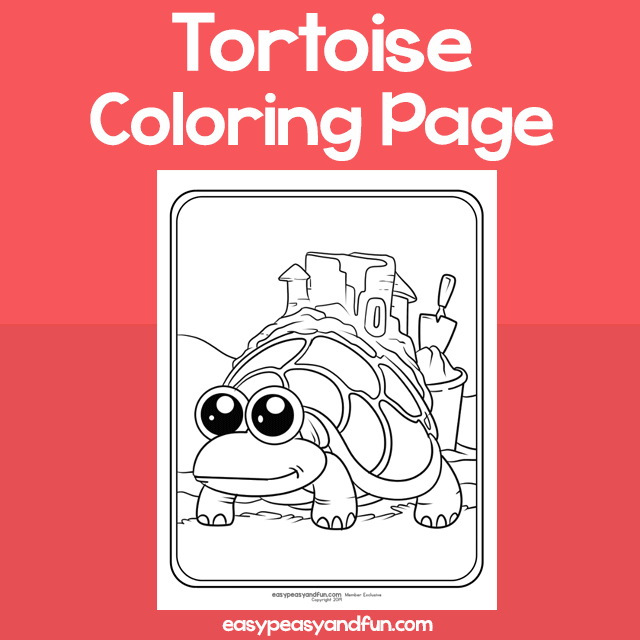 Tortoise - Coloring Pages