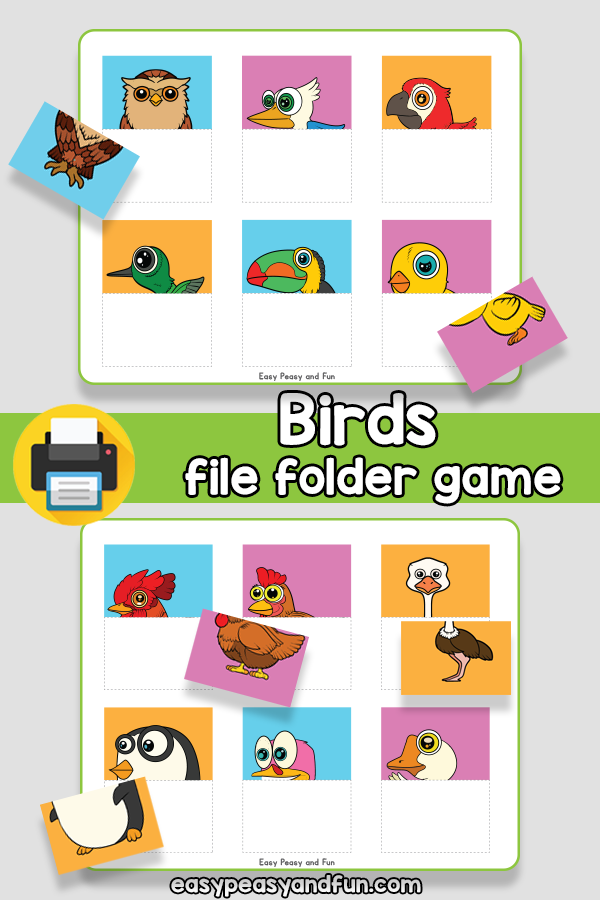 Birds File Folder Game