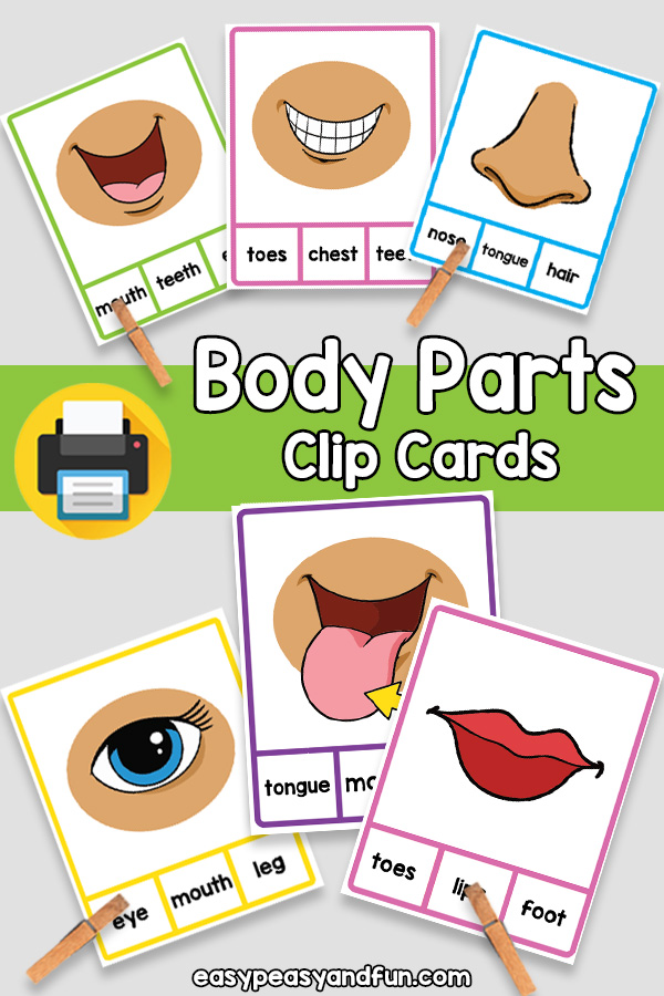Body Parts Clip Cards for Kindergarten