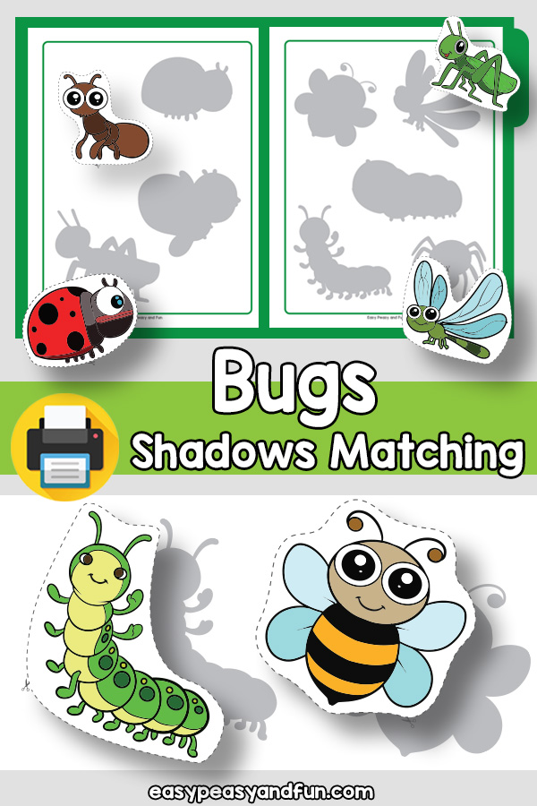 Bugs Shadow Matching File Folder Game for Kindergarten