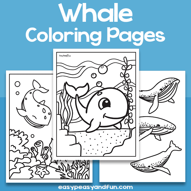 Whale Coloring Sheets