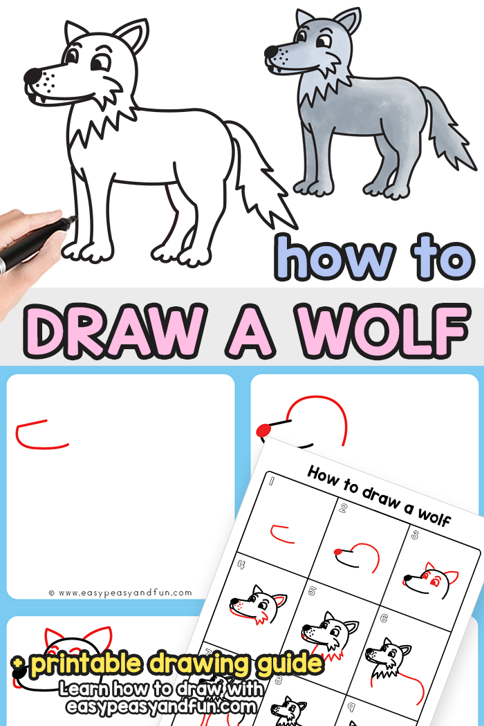 How to Draw a Wolf Step by Step Tutorial