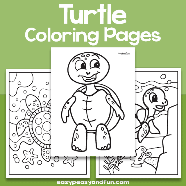 Turtle Coloring Sheets