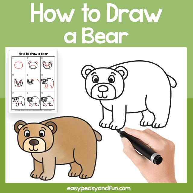 Comment dessiner un ours